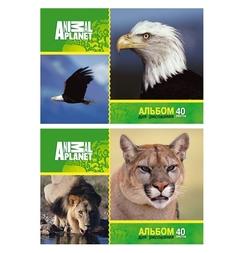 Альбом для рисования А4 40л Action Animal Planet Action!