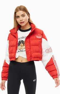 Куртка ED7599 Adidas