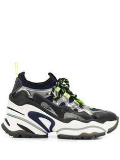 Ash Bird sneakers
