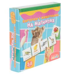 Развивающая игра Дрофа Магнит в коробке. Карточки с животными на Магнитах