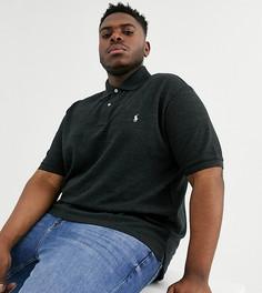 Черное поло из пике с логотипом Polo Ralph Lauren Big & Tall - Черный