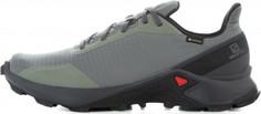 Кроссовки мужские Salomon Alphacross GTX, размер 43