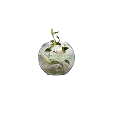 Ваза Sandra Rich globe 20.5см