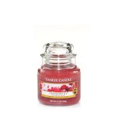 Ароматическая свеча Yankee candle маленькая Клюква со льдом 104 г