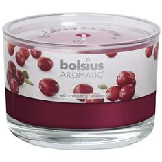 Свеча ароматическая Bolsius в банке Клюква 6.3х9 см