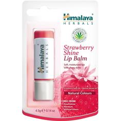 Бальзам для губ Himalaya Herbals Клубничный блеск 4,5 г
