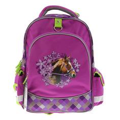 Рюкзак школьный wild horse Erich krause