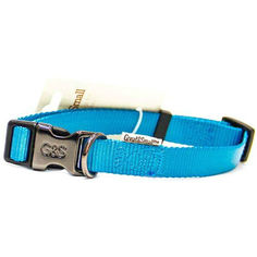 Ошейник для собак GREAT&SMALL 25x450-650мм нейлон Голубой