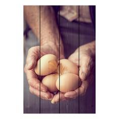 Картина (40х60 см) Куриные яйца DE-104-480 Ekoramka