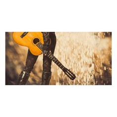 Картина (120х60 см) Девушка с гитарой HE-102-149 Ekoramka