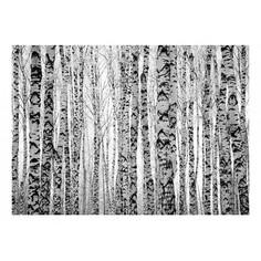 Картина (70х50 см) Березовая роща HE-101-844 Ekoramka