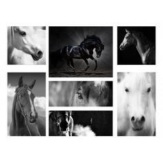 Набор из 7 картин (110х80 см) Лошади HE-110-110 Ekoramka