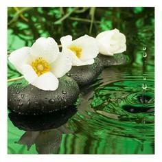 Картина (40х40 см) Белые цветы HE-101-926 Ekoramka