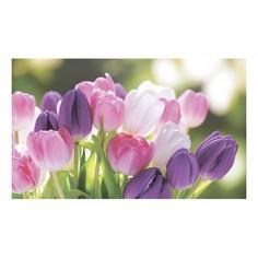 Картина (50х30 см) Букет тюльпанов SE-102-227 Ekoramka