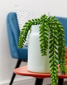 Зеленая широкая стеклянная ваза ASOS SUPPLY - Мульти