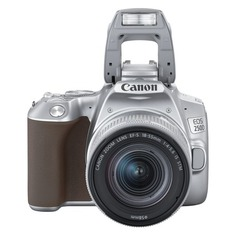 Зеркальный фотоаппарат CANON EOS 250D kit ( EF-S 18-55mm f/1:4-5.6 IS STM), серебристый