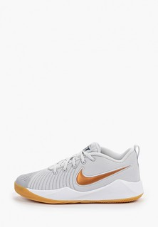 Кроссовки Nike TEAM HUSTLE QUICK 2 (GS)