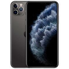 Смартфон Apple iPhone 11 Pro Max 64GB Space Grey (MWHD2RU/A)