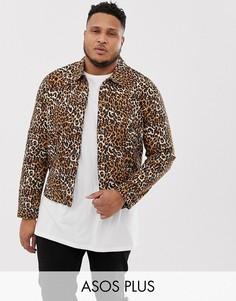 Джинсовая куртка с леопардовым принтом ASOS DESIGN Plus-Светло-коричневый