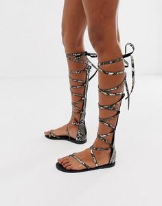 Высокие сандалии-гладиаторы со змеиным принтом ASOS DESIGN Fireworks-Мульти