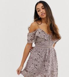 Кружевное платье мини с открытыми плечами New Look Petite-Фиолетовый