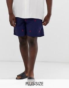 Темно-синие шорты для плавания со сплошным принтом логотипа Polo Ralph Lauren Big & Tall Traveler-Темно-синий