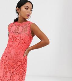 Коралловое кружевное платье-футляр с высоким воротом Paper Dolls Petite-Оранжевый