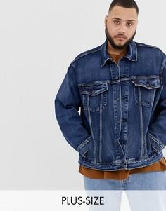 Выбеленная джинсовая куртка Levis Big & Tall-Синий