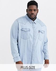 Красная выбеленная джинсовая рубашка в ковбойском стиле Levis Big & Tall-Синий