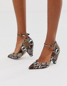 Коричневыеостроносые туфли на среднем каблуке со змеиным рисунком ASOS DESIGN - Speak Out-Мульти