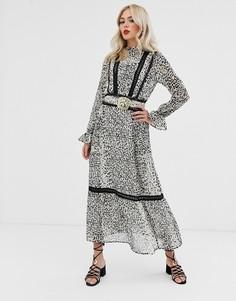 Платье макси с леопардовым принтом, кружевными вставками и поясом с пряжкой ASOS DESIGN-Мульти