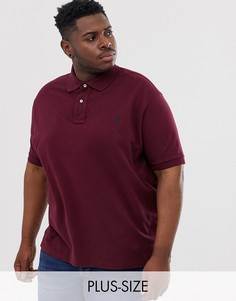 Поло из пике винного цвета с логотипом Polo Ralph Lauren Big & Tall-Красный