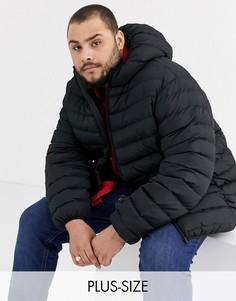 Черная дутая куртка с капюшоном Duke king size-Черный
