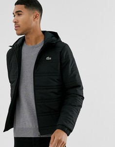 Черная стеганая куртка с капюшоном Lacoste-Черный