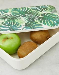 Коробка для завтрака с принтом пальм Talking Tables-Зеленый