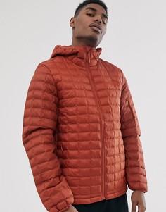 Оранжевая куртка с капюшоном The North Face Thermoball Eco-Оранжевый