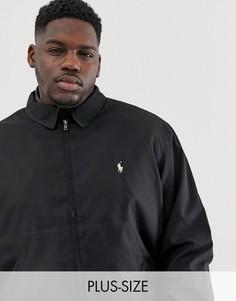 Черная куртка Харрингтон с логотипом Polo Ralph Lauren Big & Tall - Bi-Swing-Черный
