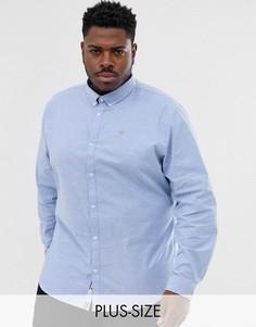 Голубая оксфордская рубашка River Island - Big & Tall-Синий