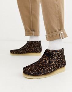 Черные ботинки с анималистичным принтом Clarks Originals wallabee-Коричневый