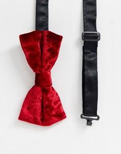 Красный галстук-бабочка из фактурного бархата Twisted Tailor