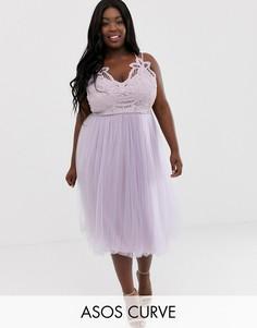 Премиум-платье миди из тюля с кружевным лифом ASOS DESIGN Curve-Мульти