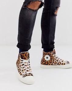 Высокие кеды с леопардовым принтом Converse Chuck Taylor All Star-Коричневый