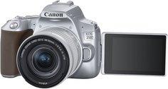Цифровой фотоаппарат Canon EOS 250D 18-55IS STM (серебристый)