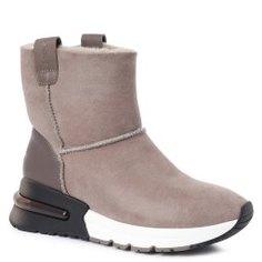 Ботинки ASH KYOTO серо-коричневый