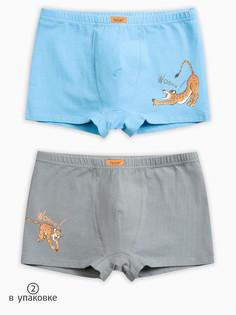 """Трусы для мальчиков """"белье и пижамы"""" Pelican"""