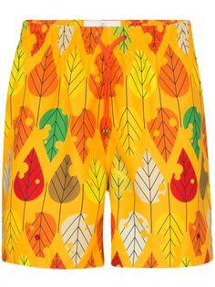 Timo Trunks плавки-шорты с принтом