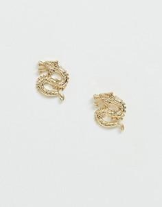 Золотистые серьги-гвоздики с дизайном в виде драконов Missguided-Золотой