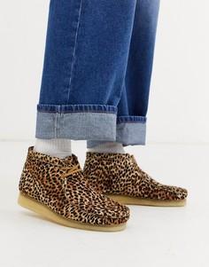 Коричневые ботинки с анималистичным принтом Clarks Originals wallabee-Светло-коричневый