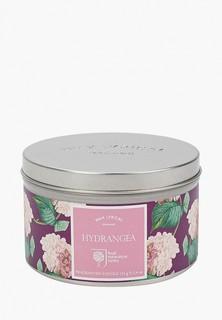 Свеча ароматическая Wax Lyrical Цветущая гортензия, 25 часов горения