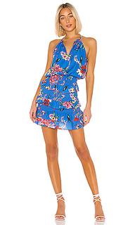 Платье в цветочек karolina - Parker